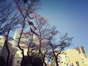 桜も見ごろでしたね☆
